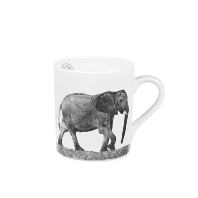 Mug-1-trilogy-in-africa