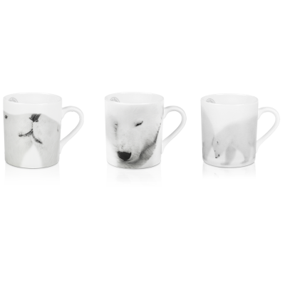 Photo de 3 mug artic emotion